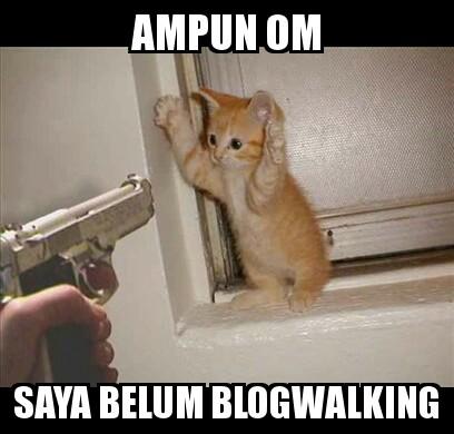 Kitten Criminal.jpg